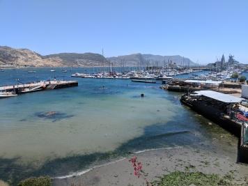 Simon's Town Harbour